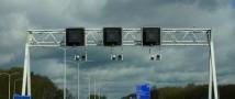 На границе Германии и Голландии наркоторговцы устроили плантацию конопли