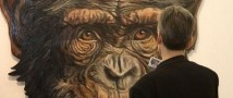 Выставка-ярмарка Арт-Москва под угрозой срыва — сообщают организаторы