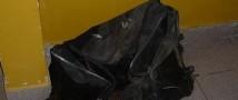 В Москве-реке найдена сумка с отрезанной женской головой