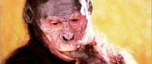 Учеными — антропологами была опровергнута важность линии австралопитеков в процессе эволюции человеческого мозга