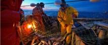 Рыбаки Аляски выступили против поставок российских морепродуктов