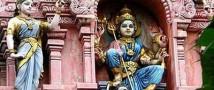 В Индии мужчина предотвратил покушение на жизнь ребенка