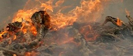 Трагедия в Перми: двое детей сгорели заживо в результате умышленного поджога квартиры