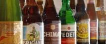 Бельгийцы выяснили, почему пиво притягательно для человека и мух