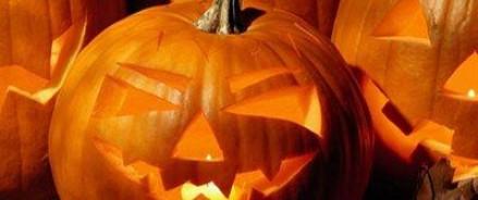 В канадских городах Хэллоуин отменят из — за вторжения медведей