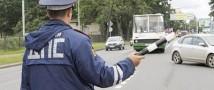 Петербуржец зарыл номерные знаки своего авто, испугавшись ГИБДД