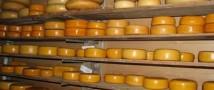 На Алтае занялись производством элитных сортов сыра