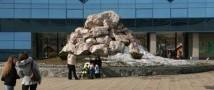 Новосибирский зоопарк борется за жизнь фламинго