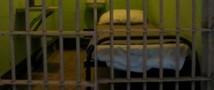 За секс с восьмиклассницей жителя Камчатского края посадят в тюрьму  на три года