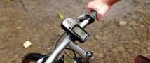 В Новой Зеландии полицейские задержали голого велосипедиста