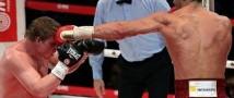 Поветкин не будет биться с Кличко в текущем году