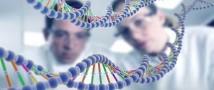 Ремонт для наших генов