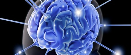Наш удивительный мозг