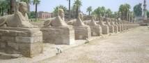Ради работы египтянке пришлось притворяться мужчиной 43 года