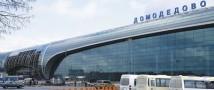 На борту самолета Петербург-Москва один из пассажиров набросился на членов экипажа