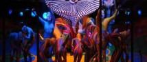 Неизвестный в Cirque du Soleil