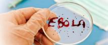 США предлагают России вместе бороться с Эболой