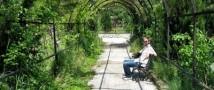 Предприниматели в Крыму страдают из-за властей