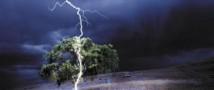 Пострадавшие от удара молнии на Крите россияне оказались в реанимации