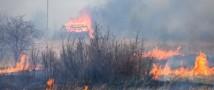 Пострадавшими от пожаров в Хакасии признали более 6,4 тысяч человек