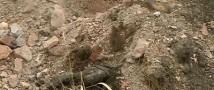 В Оренбургской области на одной из строек найдено массовое захоронение тел