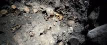 В Мехико была обнаружена 30-метровая стена, состоящая из человеческих черепов