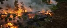За минувшие выходные в Забайкалье вдвое увеличилась площадь лесных пожаров