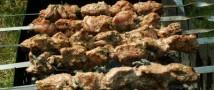 Право жарить шашлык в лесу может стать в России платным