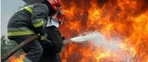 На Братском лесоперерабатывающем комплексе в результате нарушения правил техники безопасности погиб человек
