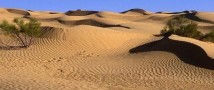 Пятилетний ребенок был обнаружен в пустыне совершенно один с заряженным пистолетом в руках