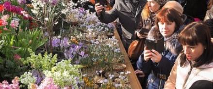 За первые 2 дня работы выставку «Репетиция весны» в «Аптекарском огороде» посетили более 8400 человек