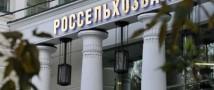 Россельхозбанк оказывает поддержку хлебопекарному производству на Дону