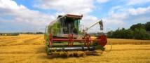 Правительство выделило более 12 млрд рублей на поддержку растениеводства