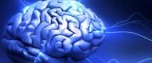 Ученые доказали, что на ум человека влияют времена года
