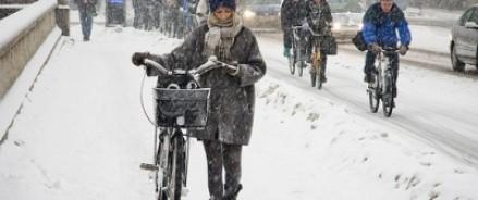 Москвичам предложат пересесть завтра на велосипеды