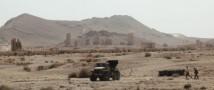 ВКС России окончательно уничтожили боевиков в Пальмире