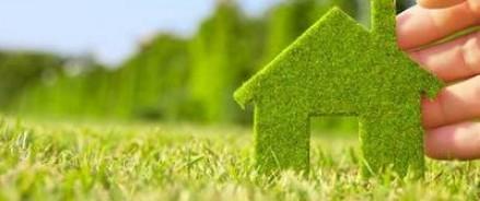 Правительство Российской Федерации планирует посвятить 2017 год экологии