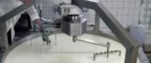 Селфи — не всегда хорошо, поняли на заводе сыров, подойдя к банкротству (видео)