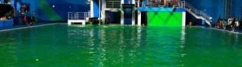 Олимпиада в Рио. Новые сюрпризы. Прыгать или нет в болото
