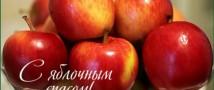 В честь Яблочного Спаса в «Аптекарском огороде» научат украшать посуду цветами