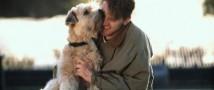 Немцы позволили хоронить собак вместе с их хозяевами на отдельном кладбище