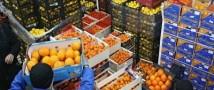 Первые партии фруктов с Турции могут зайти в магазины уже в конце следующей недели
