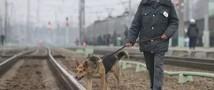 Экстренные службы Москвы осматривают вагон, в котором найдена взрывчатка