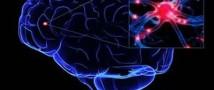 Ученые нашли способ обмануть боль