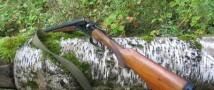 Четырехлетнюю девочку из Вольска убил ее брат, играя с ружьем