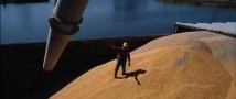 В августе Россия отправит в Венесуэлу морской транспорт, загруженный пшеницей