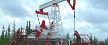 До конца 2017 года изменений существующего порядка на нефтяном рынке не предвидится