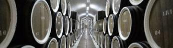 Член рода Романовых и родственник короля Швеции намерен производить линию вин в Крыму