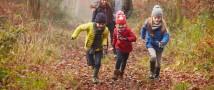 В Подмосковье стартует программа экологического туризма