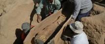 Интересная находка у членов российской экспедиции в Египте